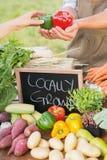 Kvinna som säljer organiska peppar på marknaden Royaltyfri Foto