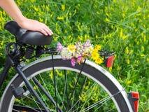 Kvinna som samlar alpina blommor med en cykel Fotografering för Bildbyråer