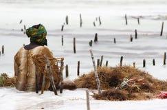 Kvinna som samlar havsväxt i Zanzibar Royaltyfri Fotografi