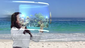 Kvinna som ser ferieaktiviteter på växelverkande massmediaarkiv på stranden stock video
