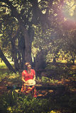 Kvinna som sitter på bänken vid treen Royaltyfri Fotografi