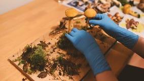 Kvinna som skapar en champinjonsammansättning stock video