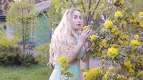 Kvinna som sniffar ett blomma träd arkivfilmer