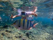 Kvinna som snorklar i blått vatten  royaltyfria foton