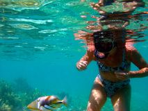 Kvinna som snorklar i klart vatten av Bora Bora royaltyfri fotografi