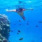 Kvinna som snorklar i Röda havet Arkivfoto