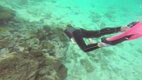 Kvinna som snorklar nära kusten av Santiagoön i Galapagos, Ecuador lager videofilmer