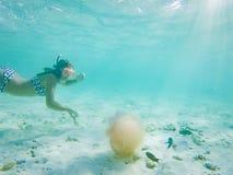 kvinna som snorklar se en yellyfish i kristallklart tropiskt vatten royaltyfri fotografi