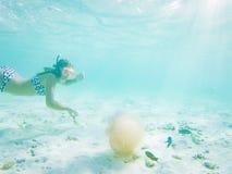 kvinna som snorklar se en yellyfish i kristallklart tropiskt vatten arkivfoton
