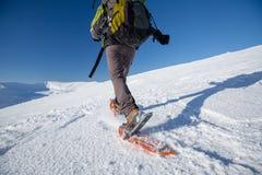 Kvinna som snowshoeing i Carpathian berg för vinter Royaltyfri Bild