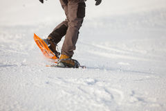 Kvinna som snowshoeing i Carpathian berg för vinter Arkivfoto
