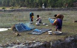 Kvinna som sorterar räkorna som de fångar på flodstranden av Brahmaputra _ 02 03 2001 royaltyfria foton
