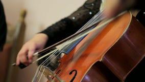 Kvinna som spelar basfiolen stock video