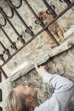 Kvinna som spelar med den nyfikna inhemska katten i gammal europeisk stad Fotografering för Bildbyråer