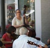 Kvinna som spelar stränginstrumenten på festivalen Arkivbilder