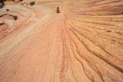 Kvinna som takiing ett fotografi i Zion National Park Royaltyfria Bilder