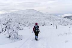Kvinna som trekking i tid för Karkonosze bergvinter poland Arkivfoton