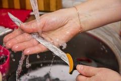 Kvinna som tvättar kniven i vasken i köket Royaltyfria Foton