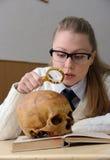 Kvinna som undersöker en mänsklig skalle Arkivbild