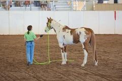 Kvinna som utbildar hennes häst Royaltyfri Bild