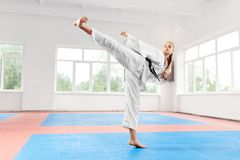 Kvinna som utför hög spark för kampsporter på kampgrupp royaltyfri bild