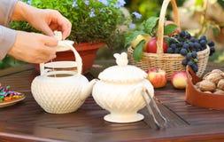 Kvinna som utomhus förbereder te i tekanna i ett trädgårds- Arkivfoto