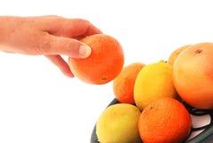 Kvinna som väljer ny frukt Arkivfoto