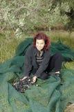 Kvinna som vilar, når insamling av olivgrön Arkivbilder