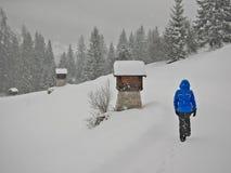 Kvinna under tungt snöfall royaltyfri bild