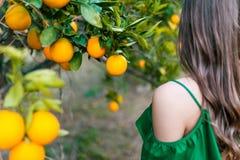 Kvinna utomhus på solnedgången i en orange fruktträdgård Royaltyfria Foton