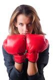 Kvinnaaffärskvinna med boxninghandskar på vit Royaltyfria Foton