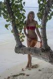 Kvinnaanseende bak trädet Arkivfoto