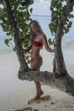 Kvinnaanseende bak trädet Royaltyfria Bilder