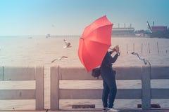 Kvinnaanseende på den konkreta bron, henne som rymmer det röda paraplyet och tar fotoseagulls på den Bangpu rekreationmitten royaltyfri bild