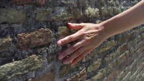 Kvinnaattraktionhand mot den gamla väggen för röd tegelsten i ultrarapid Grov yttersida för kvinnligt handhandlag av stenen arkivfilmer