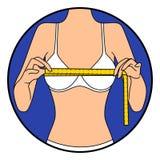 Kvinnaband formatet av hennes bröstkorg royaltyfri illustrationer