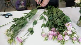 Kvinnablomsterhandlaren arbetar med vita och purpurfärgade blommor på tabellen, handcloseup lager videofilmer