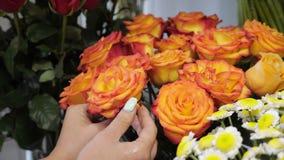Kvinnablomsterhandlaren tar omsorg av blommor som river torkade rosa kronblad, handcloseup lager videofilmer