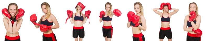 Kvinnaboxare på vit bakgrund Royaltyfria Bilder