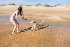 Kvinnabruenetten i bikinin som spelar med hans, lismar hundlabrador på kusten, tagande på kameran Royaltyfri Fotografi