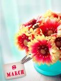 8 kvinnadag för marsch Blommor i kruka med kortet Royaltyfri Fotografi