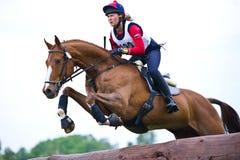 Kvinnaeventer på hästen som hoppar över journalstaketet Fotografering för Bildbyråer