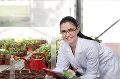 Kvinnaforskare som tar omsorg av groddar Royaltyfri Foto