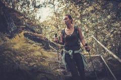 Kvinnafotvandrare med ryggsäcken som går på det lösa spåret i bergskog arkivbilder
