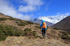 Kvinnafotvandrare som trekking på himalaya berg Arkivbilder
