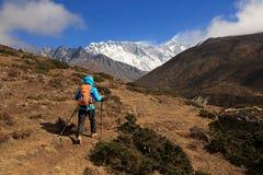 Kvinnafotvandrare som trekking på himalaya berg Fotografering för Bildbyråer