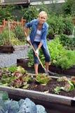 Kvinnagrönsakträdgård Royaltyfria Bilder