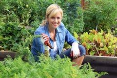Kvinnagrönsakträdgård Royaltyfria Foton