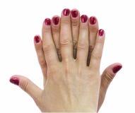 Kvinnahänder Arkivbilder