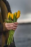 Kvinnahänder med gula tulpan stänger sig upp Royaltyfri Foto